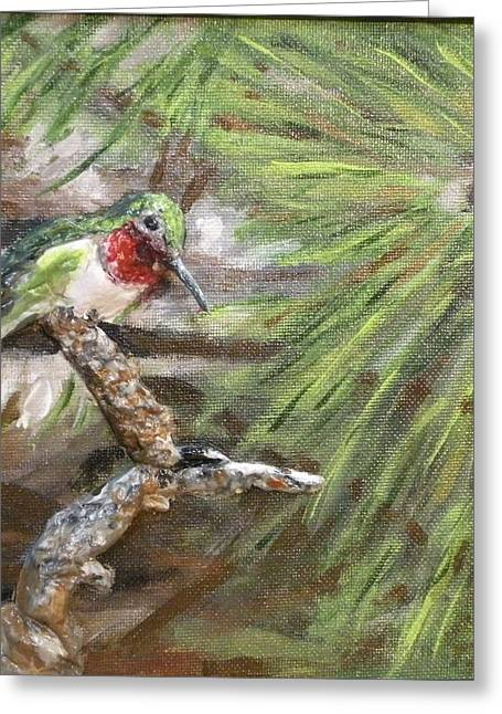 Birds Reliefs Greeting Cards - Hummer on a Limb Greeting Card by Lorrie T Dunks