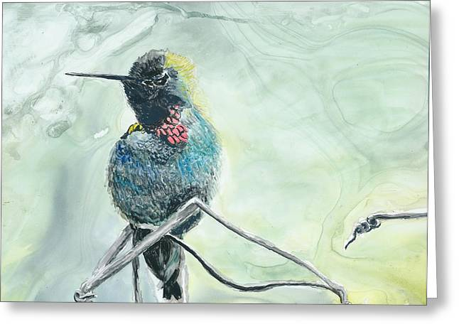 Humming Bird Greeting Card by Donna Turbyfill