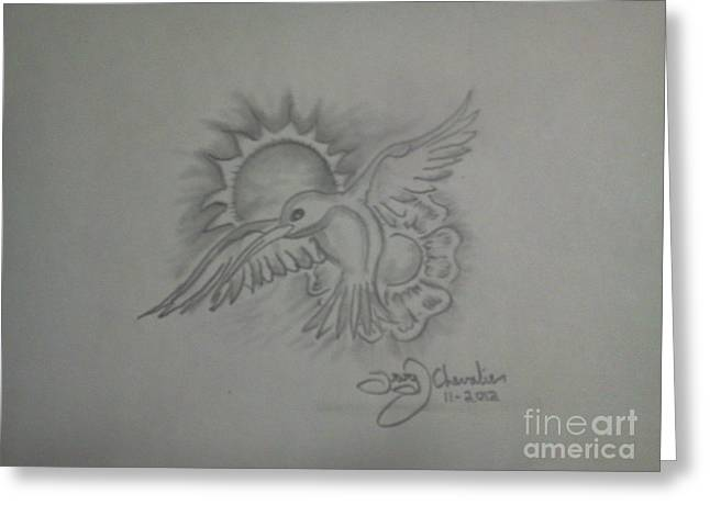 Chevalier Drawings Greeting Cards - Humming Bird Greeting Card by Troy Chevalier