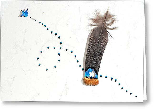 Handmade Reliefs Greeting Cards - Hummingbird 4 Greeting Card by Chris Maynard