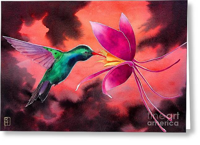 Columbine Greeting Cards - Hummingbird And Columbine Greeting Card by Robert Hooper
