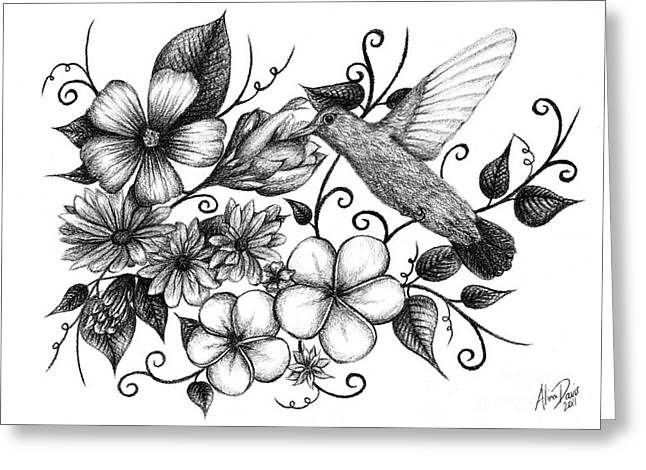 Scroll Drawings Greeting Cards - Hummingbird and Floral Sketch Greeting Card by Alina Davis