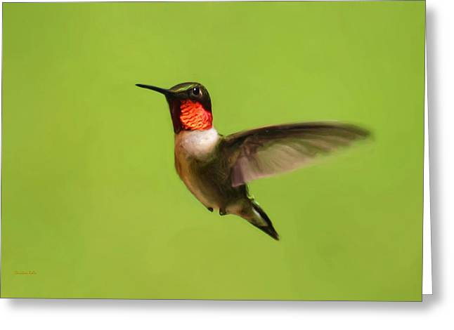 Flying Animal Paintings Greeting Cards - Hummingbird Defender Greeting Card by Christina Rollo