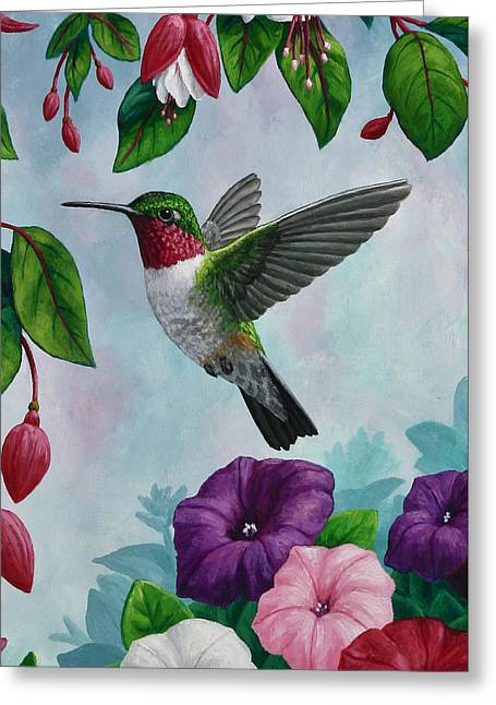 Birds And Flowers Greeting Cards - Hummingbird Greeting Card 1 Greeting Card by Crista Forest