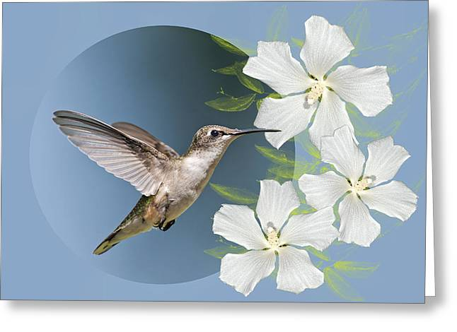 Hummingbird Heaven Greeting Card by Bonnie Barry