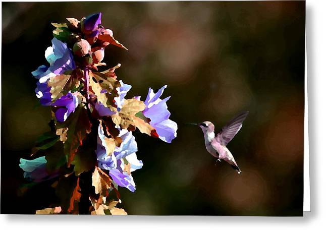 Hovering Greeting Cards - Hummingbird II Greeting Card by Deena Stoddard