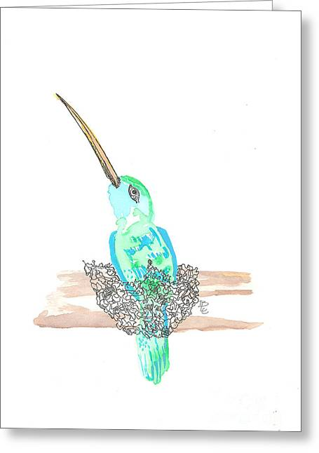Birds In A Nest Greeting Cards - Hummingbird in a Nest Greeting Card by Bernadette Crotty