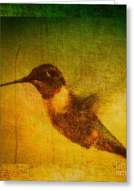 Whiteoaks Photography Greeting Cards - Hummingbird Melody Greeting Card by Eva Thomas