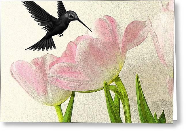 Hummingbird Greeting Card by Sharon Lisa Clarke