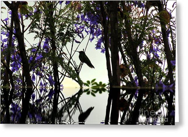 Reflecting Water Greeting Cards - Hummingbird Silhouette Reflection Greeting Card by Al Bourassa
