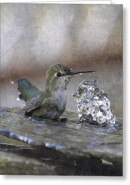 Hummingbird Spa Greeting Card by Angie Vogel