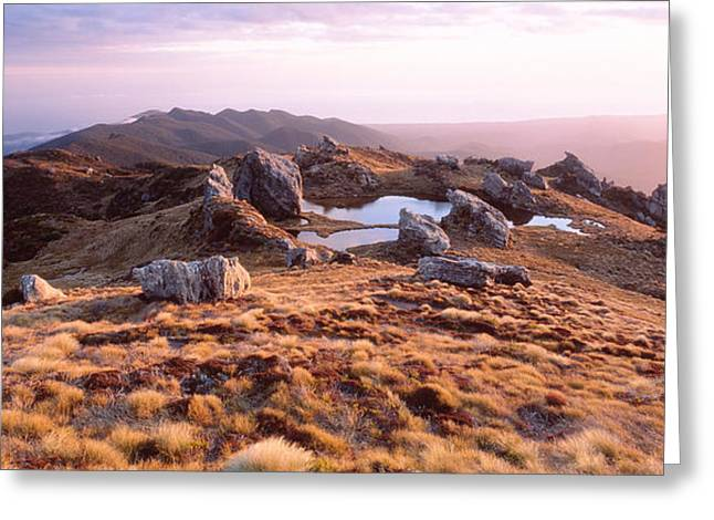 Hump Greeting Cards - Hump Ridge Fiordland National Park New Greeting Card by Panoramic Images