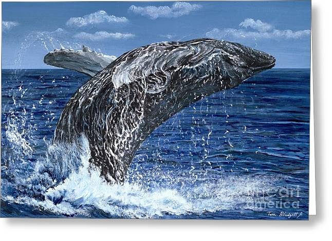 Best Sellers -  - Pacific Ocean Prints Greeting Cards - Humpback Whale Greeting Card by Tom Blodgett Jr