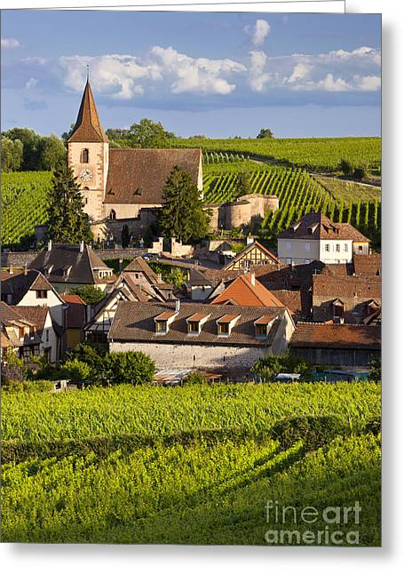Route Des Vins Greeting Cards - Hunawihr Greeting Card by Brian Jannsen