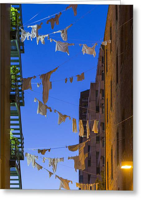 Hung Out To Dry 1 Greeting Card by Scott Campbell