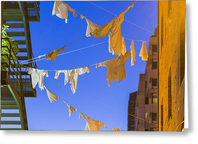 Hung Out To Dry 2 Greeting Card by Scott Campbell