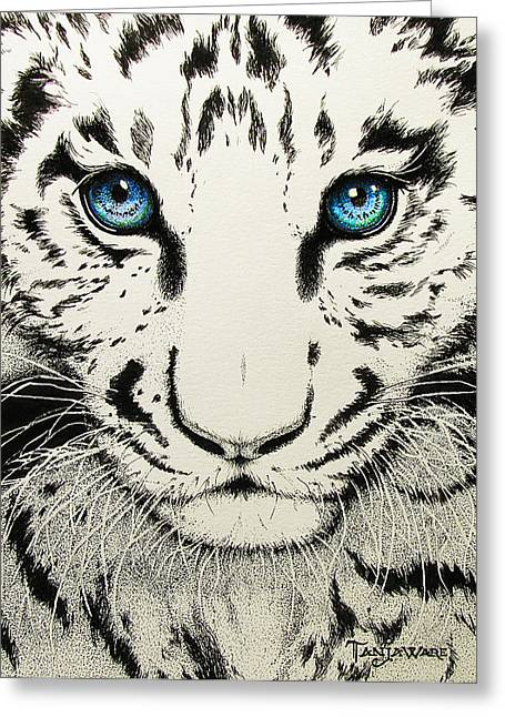 Tiger Drawings Greeting Cards - Hungry Eyes Greeting Card by Tanja Ware