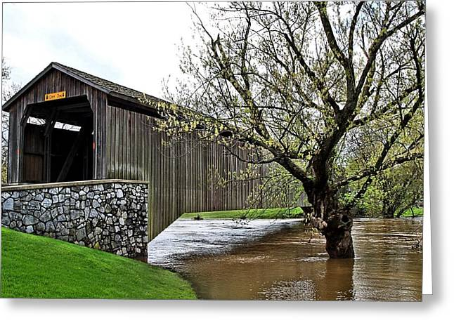 Conestoga Greeting Cards - Hunseckers Mill Covered Bridge Greeting Card by DJ Florek