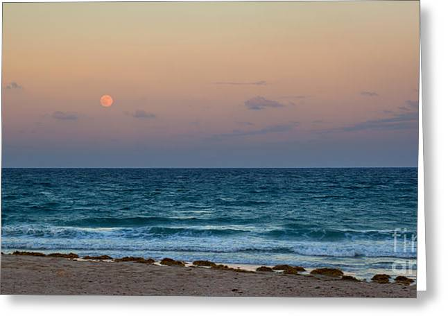 Moon Beach Photographs Greeting Cards - Hunters Moon Greeting Card by Michelle Wiarda