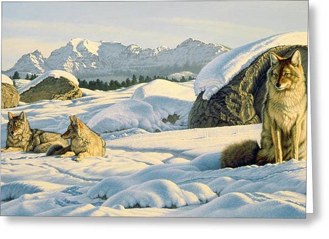 Coyote Greeting Cards - Hunters Rest Greeting Card by Paul Krapf