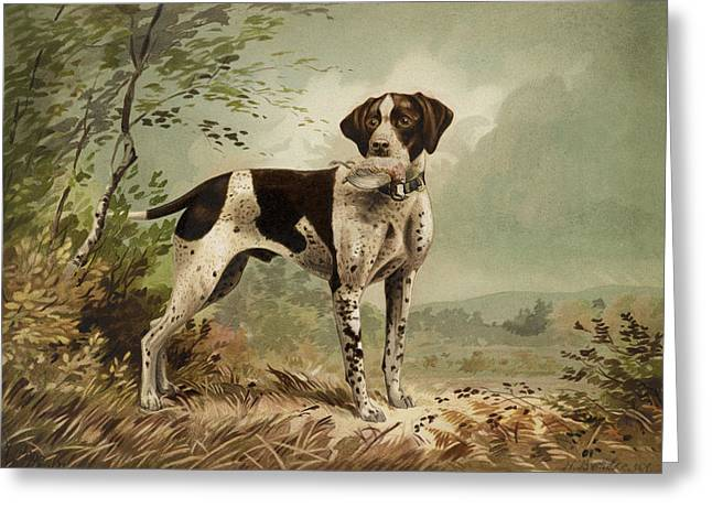 Breeds Greeting Cards - Hunting Dog circa 1879 Greeting Card by Aged Pixel