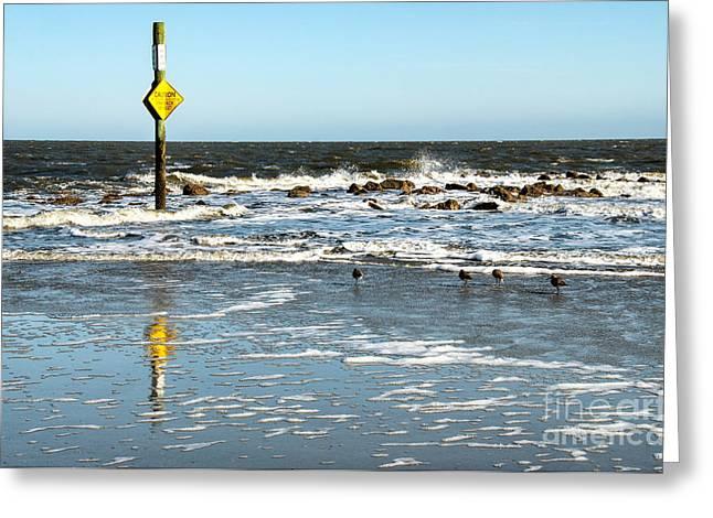 Hunting Cap Greeting Cards - Hunting Island Beach South Carolina Caution Greeting Card by Vizual Studio