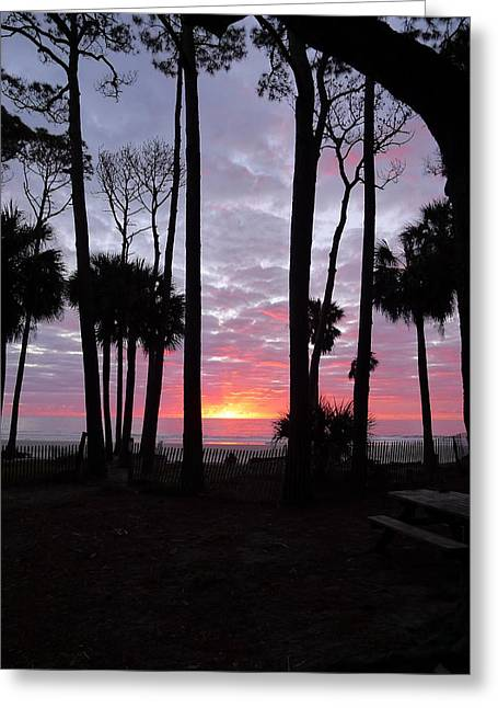 The Escape Capsule Greeting Cards - Hunting Island Sunrise Greeting Card by Joel Deutsch
