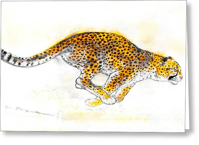Hunting Pastels Greeting Cards - Hunting-leopard Greeting Card by Kurt Tessmann