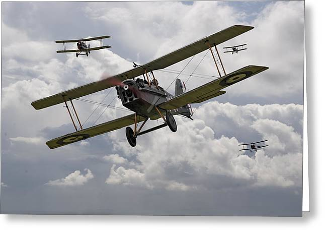 Triplane Greeting Cards - Hunting Pack Greeting Card by Pat Speirs
