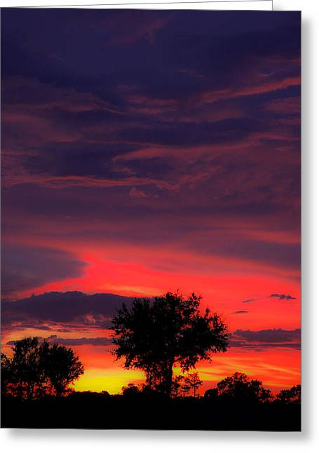 Florida Pyrography Greeting Cards - Huricane Sunset Greeting Card by Zachary Cox