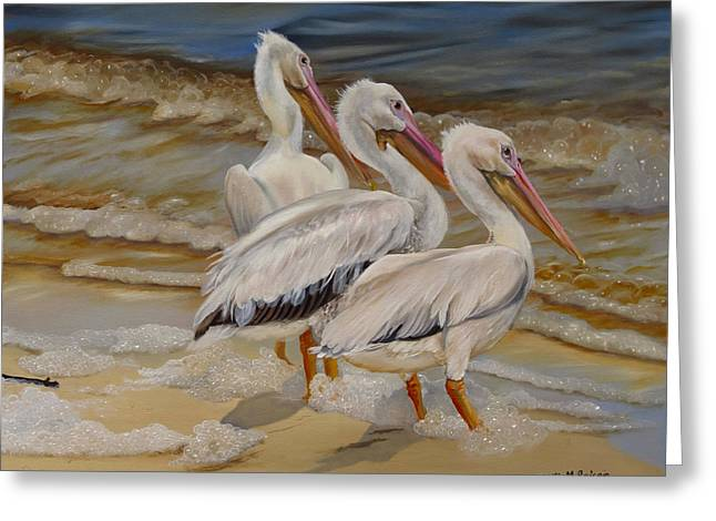 Wadingbird Greeting Cards - Hurricane Issac Pelicans Greeting Card by Phyllis Beiser