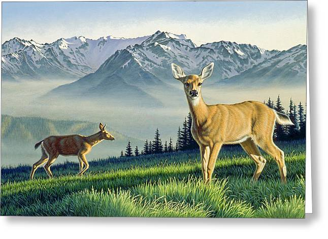 Olympic Mountains Greeting Cards - Hurricane Ridge-Blacktails Greeting Card by Paul Krapf