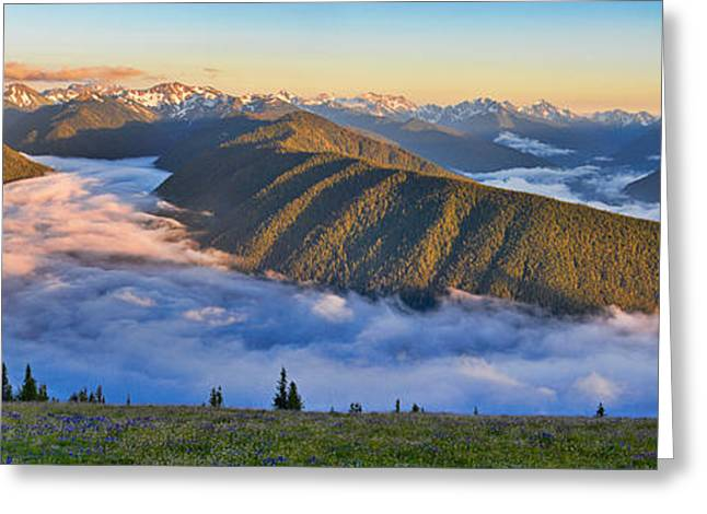 Pm Greeting Cards - Hurricane Ridge Sunset Greeting Card by Don Hall