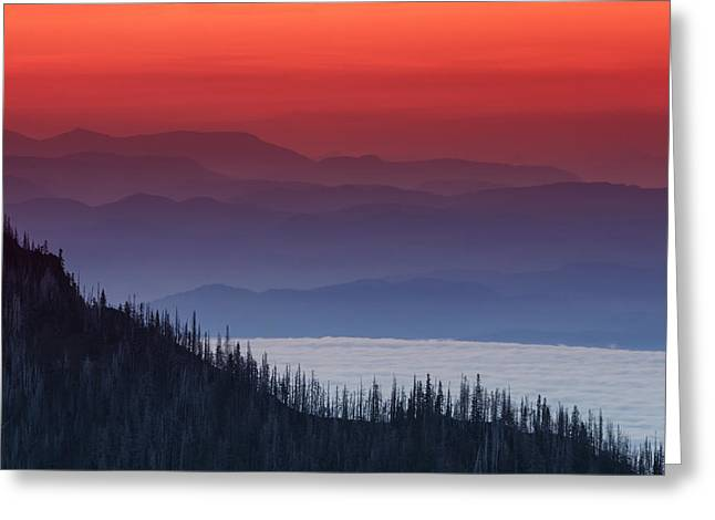 Forest Fire Greeting Cards - Hurricane Ridge Sunset Greeting Card by Mark Kiver