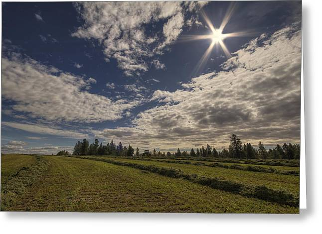 Field. Cloud Photographs Greeting Cards - Hurry up and Dry Greeting Card by Mark Kiver