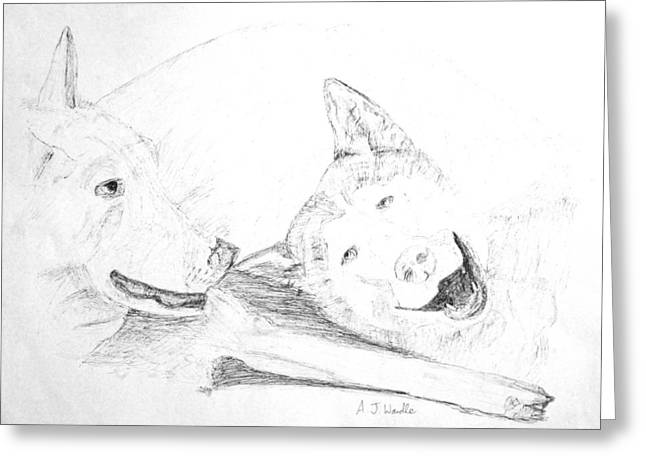 Husky Drawings Greeting Cards - Huskies having a lazy day Greeting Card by Adam Wardle