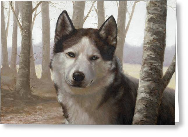Husky in the woods Greeting Card by John Silver