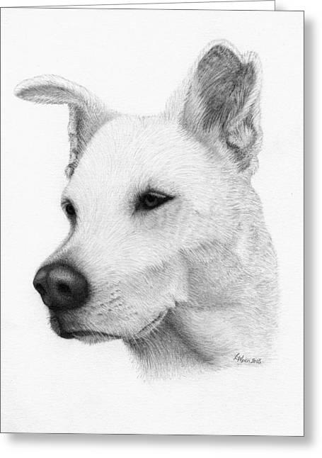 Husky Drawings Greeting Cards - Husky Greeting Card by Lorraine Moen