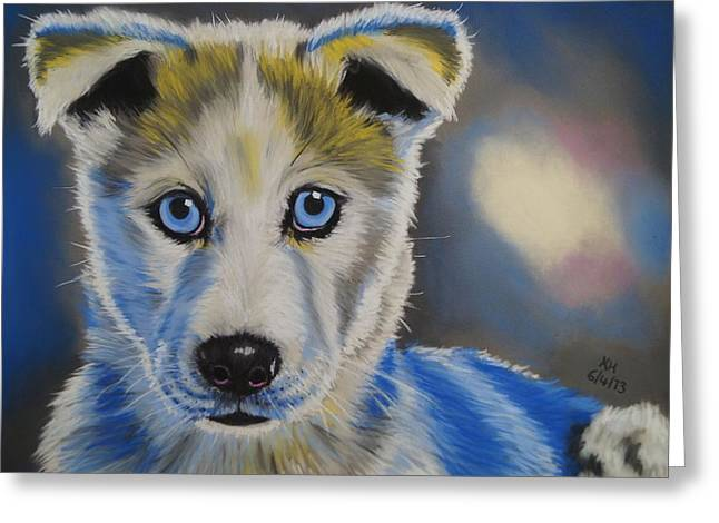 Husky Pastels Greeting Cards - Husky Puppy Greeting Card by Kevin Hubbard