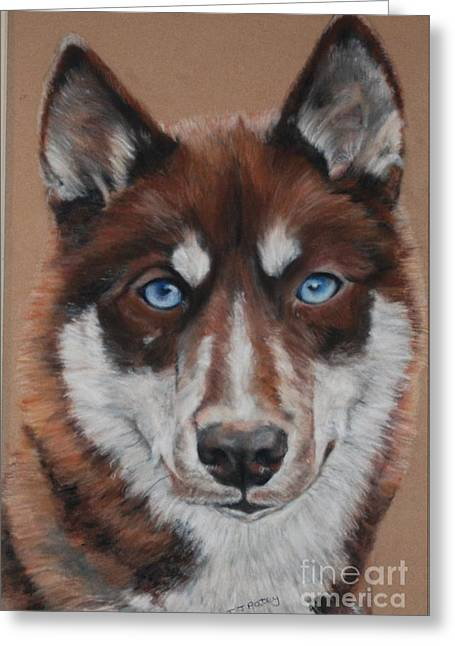Husky Pastels Greeting Cards - Husky  Greeting Card by Tanya Patey