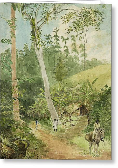 Tall Tree Greeting Cards - Hut in the jungle circa 1816 Greeting Card by Aged Pixel