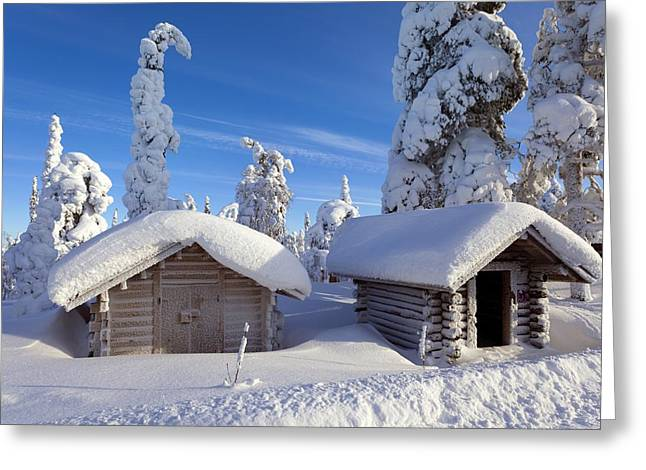 Wooden Building Greeting Cards - Huts in forest after heavy snowfall Greeting Card by Science Photo Library