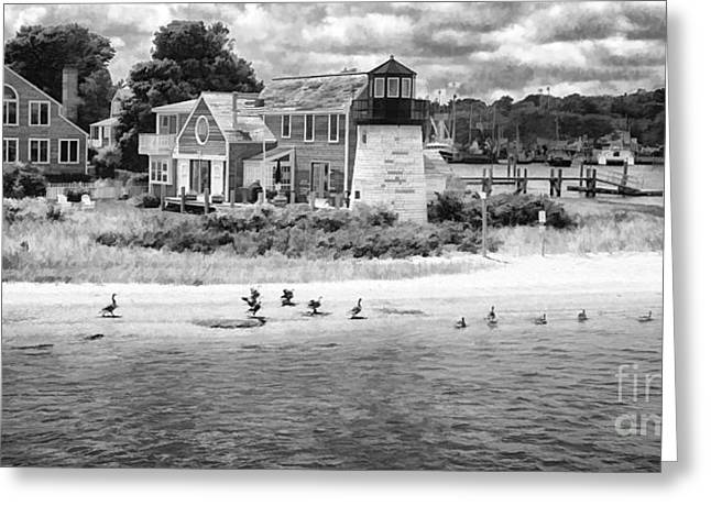 Hyannis Light Migrating Geese Bw Greeting Card by Jack Torcello