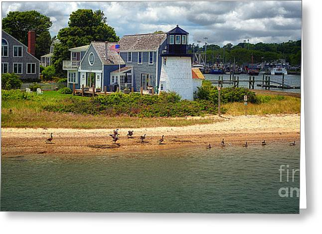 D700 Greeting Cards - Hyannis Light Migrating Geese Greeting Card by Jack Torcello