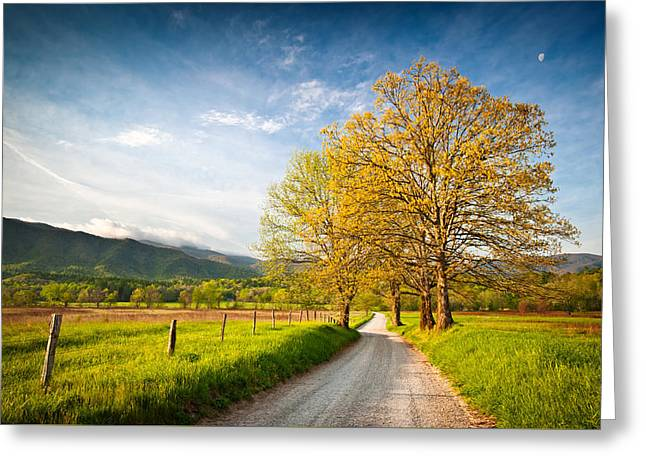 Rock Spring Trail Greeting Cards - Hyatt Lane Cades Cove Great Smoky Mountains National Park Greeting Card by Dave Allen