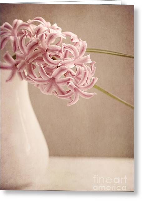 Hyacinth Greeting Cards - Hyazinth In A Vase Greeting Card by Priska Wettstein
