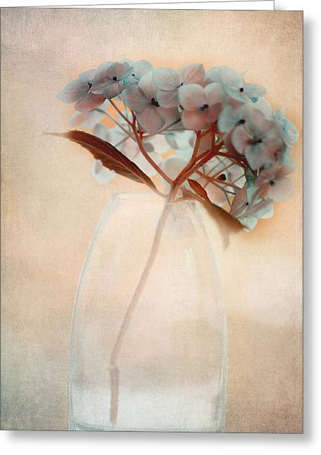 Glass Vase Greeting Cards - Hydrangea Bouquet Greeting Card by Bonnie Bruno