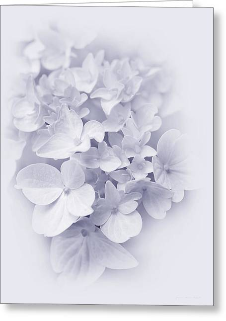 Purple Hydrangeas Greeting Cards - Hydrangea Flowers Lavender Delight  Greeting Card by Jennie Marie Schell