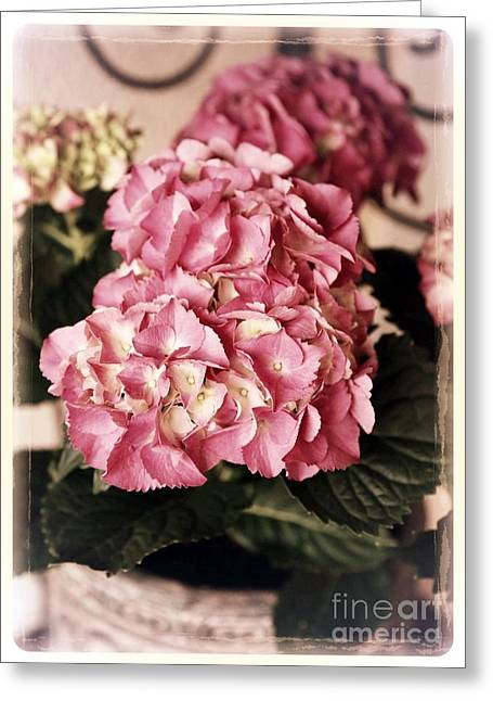 Patio Decor Greeting Cards - Hydrangea on the Veranda Greeting Card by Carol Groenen