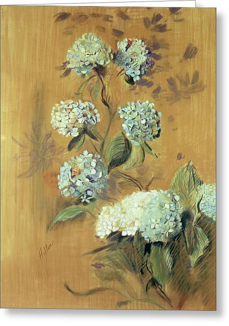 Flower Blooms Drawings Greeting Cards - Hydrangeas Greeting Card by Paul Cesar Helleu